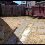 2662 76th Ave - Yard